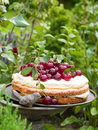 Cherry pie homemade with vanilla cream selective focus Stock Image
