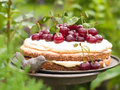 Cherry pie homemade with vanilla cream selective focus Royalty Free Stock Photos
