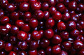 Cherry red, close-up Royalty Free Stock Photo