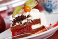 Cherry sponge cake with cream Royalty Free Stock Photo