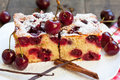 Cherry sponge cake with icing sugar Royalty Free Stock Photography