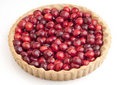 Cherry Tart Royalty Free Stock Photo
