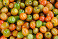 Cherry tomato Fotos de Stock Royalty Free