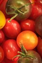 Cherry tomato close up of different kind of orange yellow and kumato Stock Photo