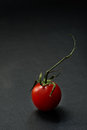 Cherry tomato over dark background one closeup Stock Photos