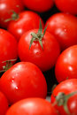 Cherry Tomatoes 2 Stock Photography