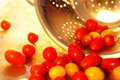 Cherry Tomatoes Royalty Free Stock Photo