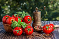 Cherry tomatoes basil pepper and pepper mill on wooden board Stock Photography