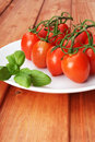 Cherry tomatoes and basil on white plate Stock Image
