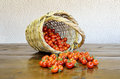 Cherry tomatoes and basket Stock Photo