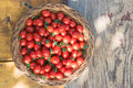 Cherry tomatoes in basket on wooden table Royalty Free Stock Photography