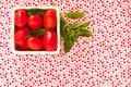 Cherry tomatoes on brightly summer fabric Royalty Free Stock Images