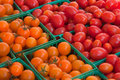 Cherry Tomatoes at a Farmer's Market Royalty Free Stock Photo
