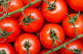 Cherry tomatoes red close up Royalty Free Stock Photography