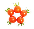 Cherry tomatoes ripe red on a white background Royalty Free Stock Photo