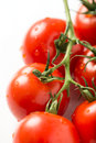 Cherry tomatoes on the vine on white Royalty Free Stock Photo