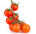 Cherry tomatoes on a white background upraised Royalty Free Stock Photo