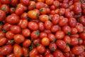 Cherry tomatos Royalty Free Stock Photo