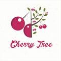 cherry tree with cherry fruit