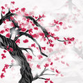 Cherry tree and flowers with space for text Royalty Free Stock Photo