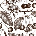 Vector seamless pattern with hand drawn cherry tree. Hand drawn illustration. Engraved fruit and berry background. Vintage design.