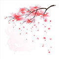 Cherry tree watercolor Royalty Free Stock Images