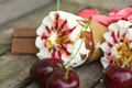 Cherry vanilla ice-cream with caramel topping. Closeup Royalty Free Stock Photo