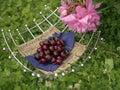Cherry In Vase Royalty Free Stock Photo