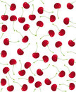 Cherry Vector seamless pattern Royalty Free Stock Images
