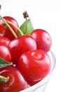Cherry on white background Royalty Free Stock Photos