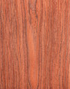 Cherry wood texture natural tree background rural Royalty Free Stock Photos