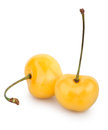 Cherry yellow two on white background Stock Photo