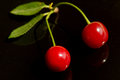 Cherry you can whip them up in smoothies or shakes bake those lovely tarts or just bung them in salads they are easily available Stock Image