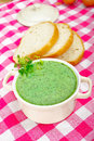 Chervil soup a portion of on a checkered tablecloth Stock Images