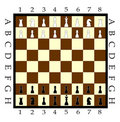 Chess Board with Chess Figure Royalty Free Stock Image
