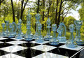 Chess board game in forest garden Royalty Free Stock Photo
