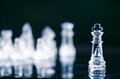 Chess business concept of victory. Chess figures in a reflection of chessboard. Game. Competition and intelligence concept. Royalty Free Stock Photo