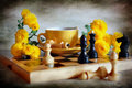 Chess and chrysanthemums Royalty Free Stock Image