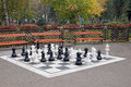 Chess figures in park autumn Royalty Free Stock Photo
