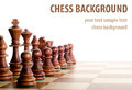 Chess isolated on white background Stock Photography