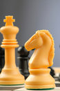 Chess-men Photographie stock libre de droits