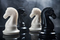 Chess pieces knight on dark background Royalty Free Stock Photography