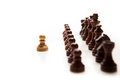 Chess pieces set on white background Stock Photography