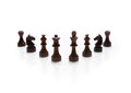 Chess pieces set on white background Stock Photos