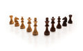 Chess pieces set on white background Stock Images