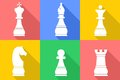 The chess set Royalty Free Stock Photo