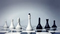 Chess team Royalty Free Stock Photos