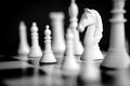 Chess white knight pieces with focus on black and image Stock Images