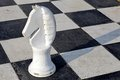 Chessboard big black and white Royalty Free Stock Images