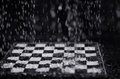 Chessboard under the rain close up view Royalty Free Stock Image